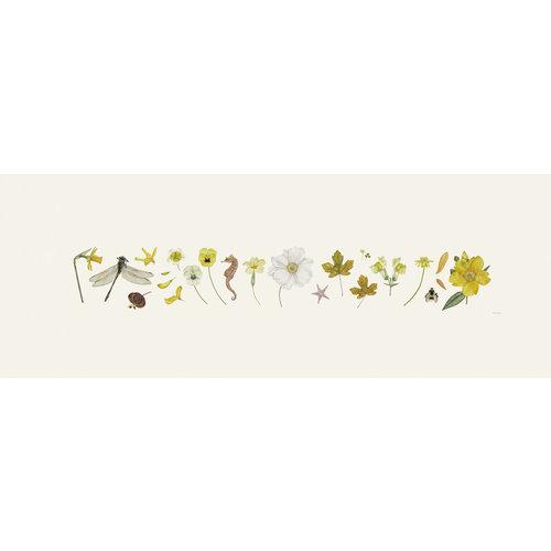 Rachel Pedder-Smith Gelber Flora und Bee Line Print - Auflage 200 mit Montierung 016
