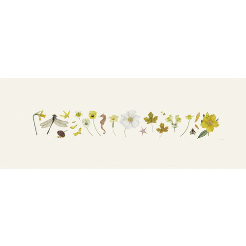 Rachel Pedder-Smith Yellow Flora and Bee Line print - edition of 200 with mount  016
