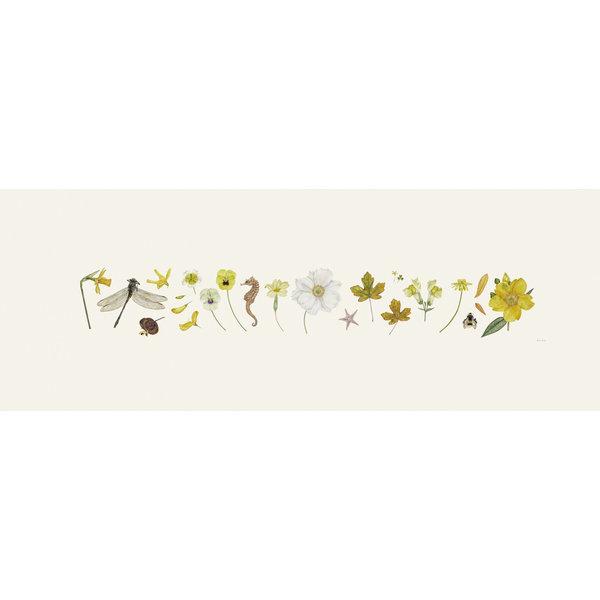 Gelber Flora und Bee Line Print - Auflage 200 mit Montierung 016