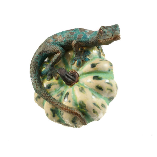 Gecko auf Squash 13