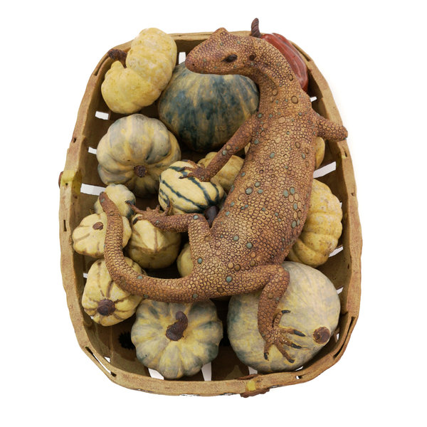 Monty, Monitor Lizard guardando calabazas en un jardín Trug - cerámica 06