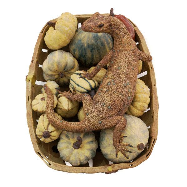 Monty, Monitor Lizard guarding squashes in a garden trug - ceramic 06