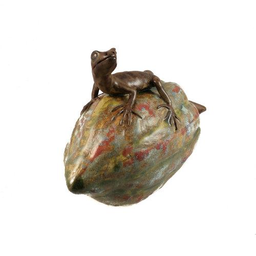 Su Hudson Pequeño lagarto en squash 18
