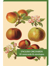 English Orchards  10 Notecard Pack