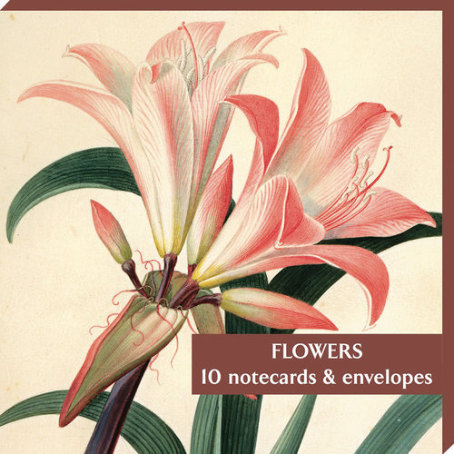 Fitzwilliam Museum Flowers Amarylis 10 Notecard Pack
