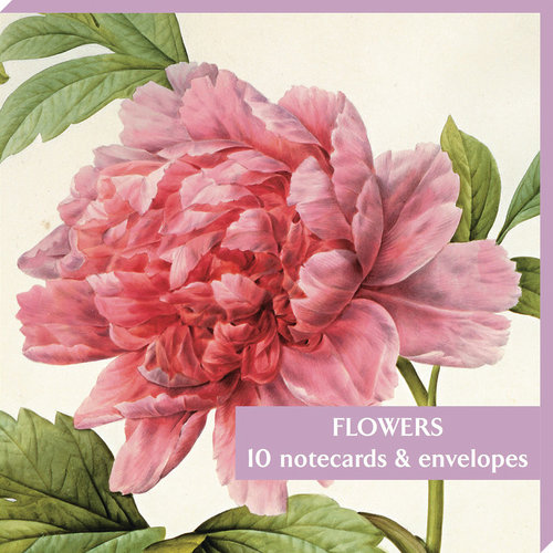 Fitzwilliam Museum Pink Paeonia Notecard Pack