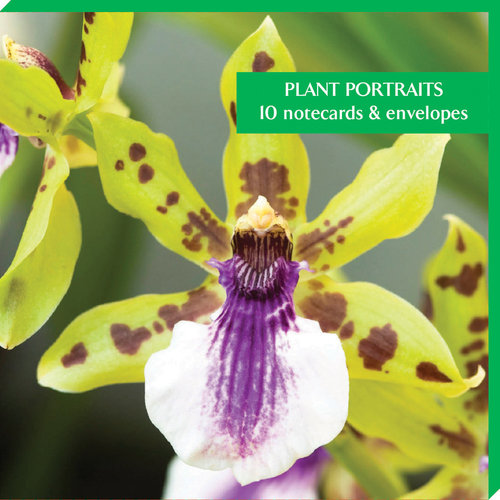 Fitzwilliam Museum Pack de 10 cartes de notes Portraits de plantes