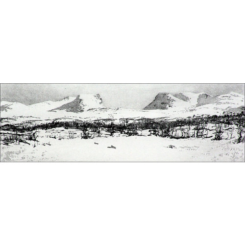 Ian Brooks Lapporten- etching  22 framed