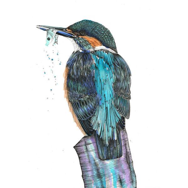 Kingfisher card 5 x 10 cm