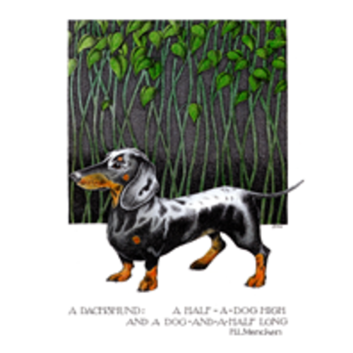 Simon Drew Designs Dachshund  card 100