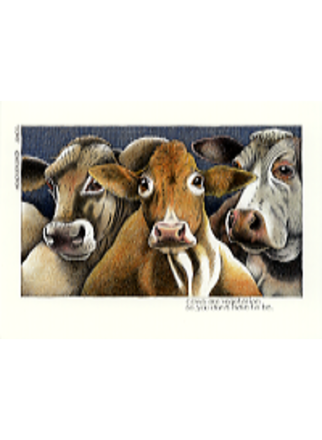Cows are Vegetarian  card 107