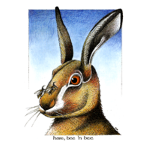 Simon Drew Designs Hare BnB card 102