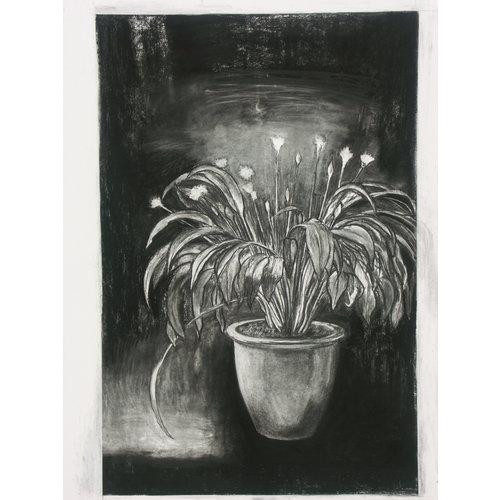 Mike Holcroft King Ransom charcoal on paper 69