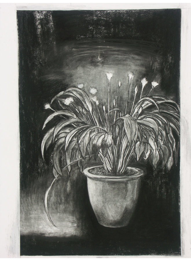 King Ransom charcoal on paper 69