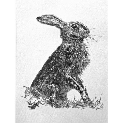 Paul Czainski Hare a/p 18
