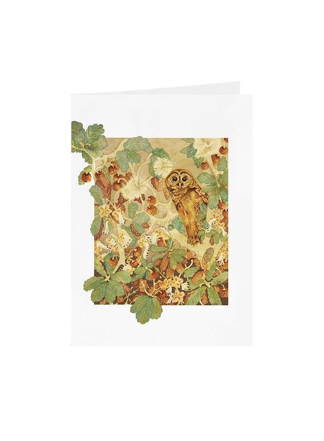 Hoot Owl  card 16