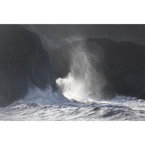 Stuart Royse Wave 02