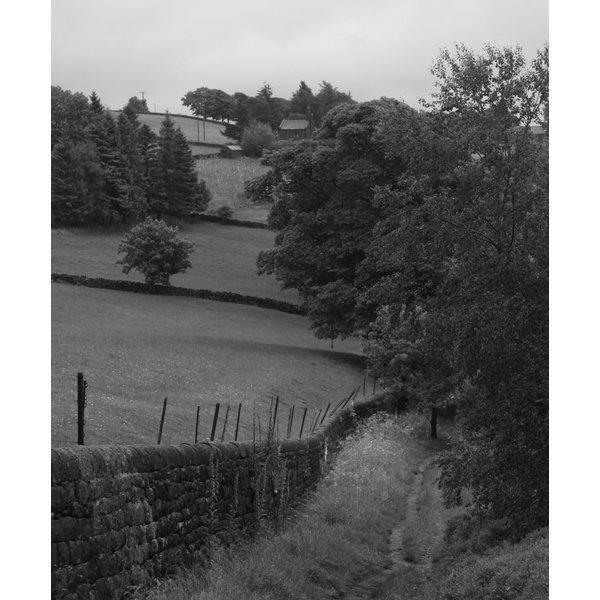 Long Causeway. Path