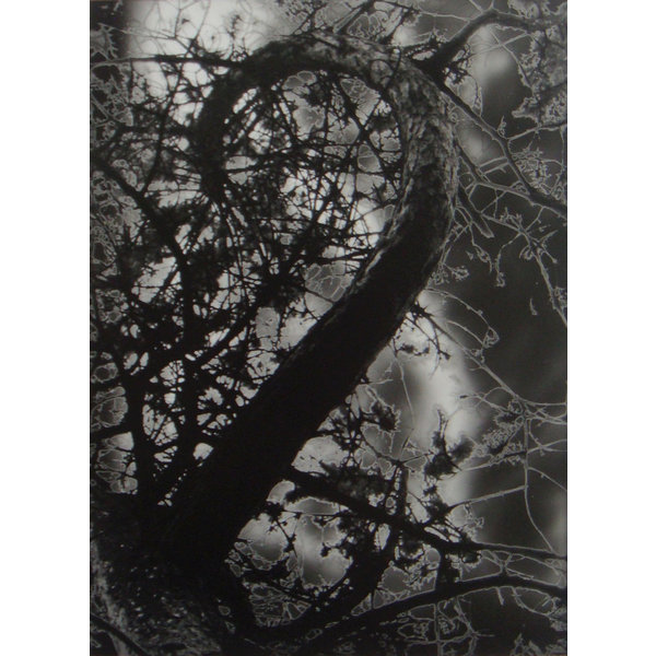 Espiral - fotografía sanattier