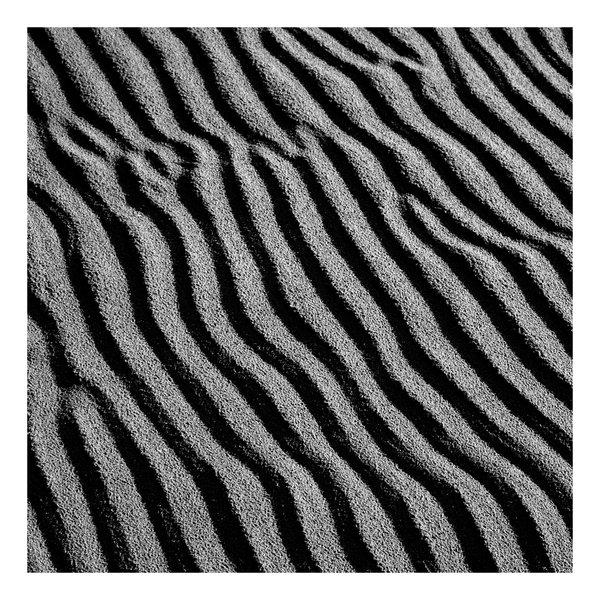 Sand Ripples, Portmeirion -  Elements of Landscape Series