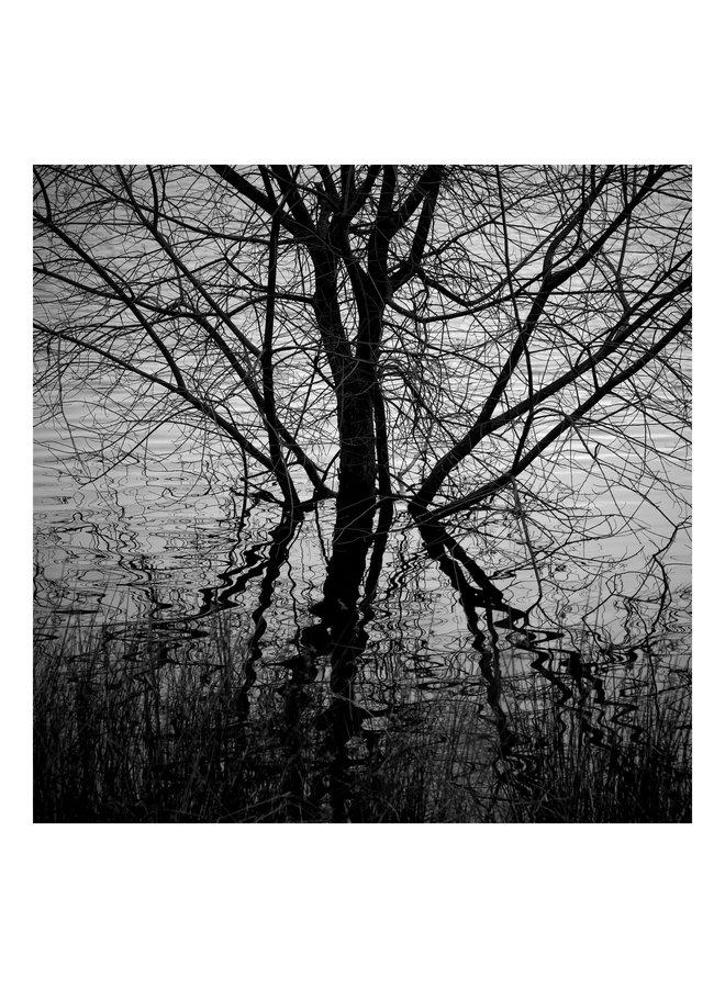Ogden Water, West Yorkshire - Elemente der Landschaftsserie