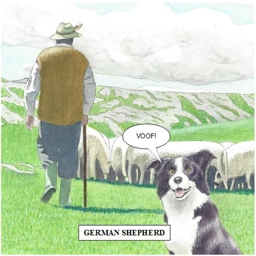 Adrian Keefe German Shepherd Humorous card 19