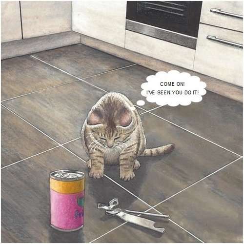 Adrian Keefe Tin Opener Humorous Cat card 16