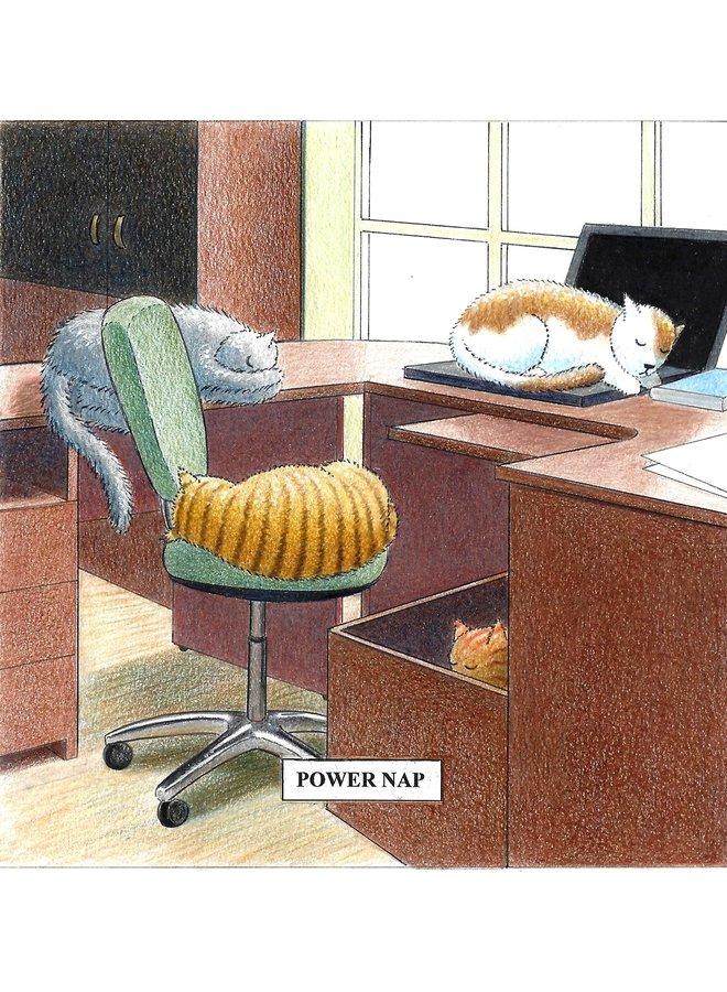 Power Nap Humorous Cat card 14