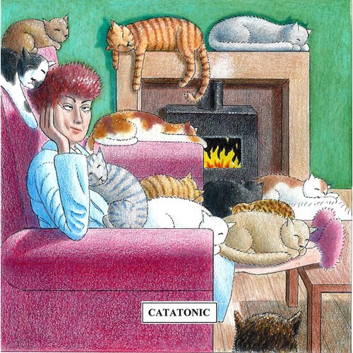 Adrian Keefe Catatonic  Humorous Cat card 12