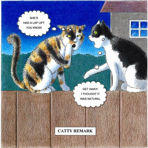Adrian Keefe Catty Remark  Humorous Cat card 11