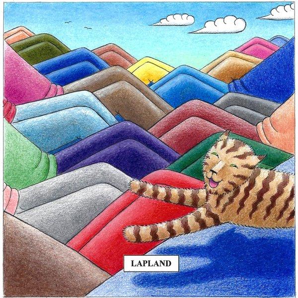 Lapland  Humorous Cat card10