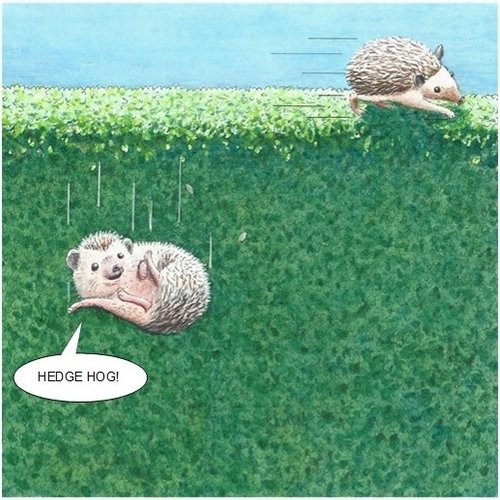 Adrian Keefe Hedge Hog Humorous card 06