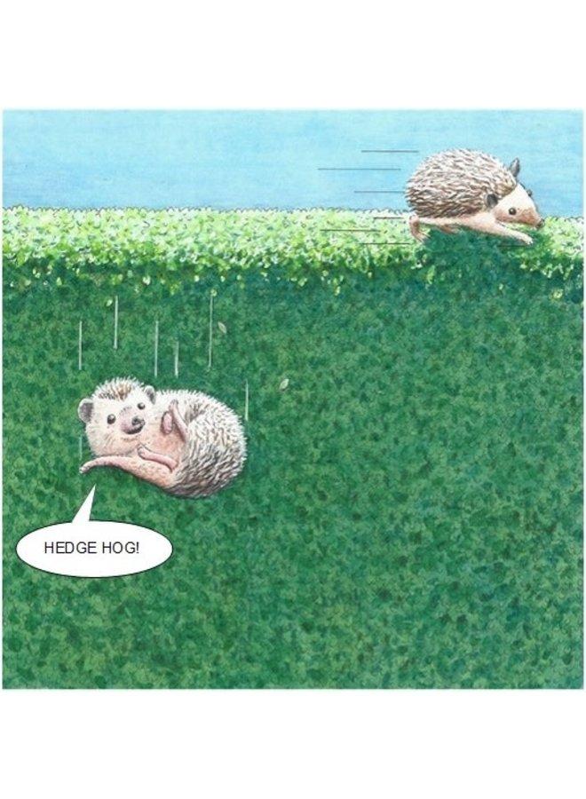Hedge Hog Humorous card 06