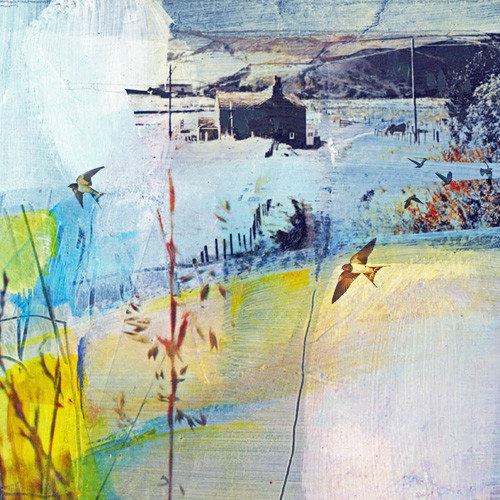 Kate Boyce Art Soft Evening Light Blackshawhead card  17