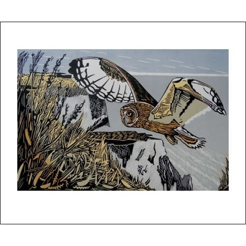 Art Angels Short Eared Owl by Pam Grimmond