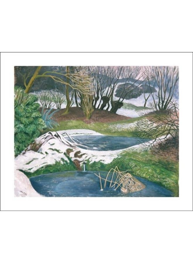 Frozen Ponds by John Nash