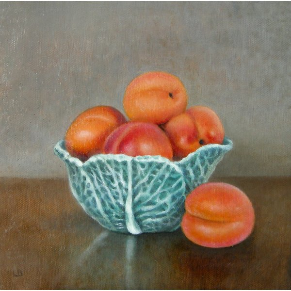 Cabbage Bowl and Apricots 031