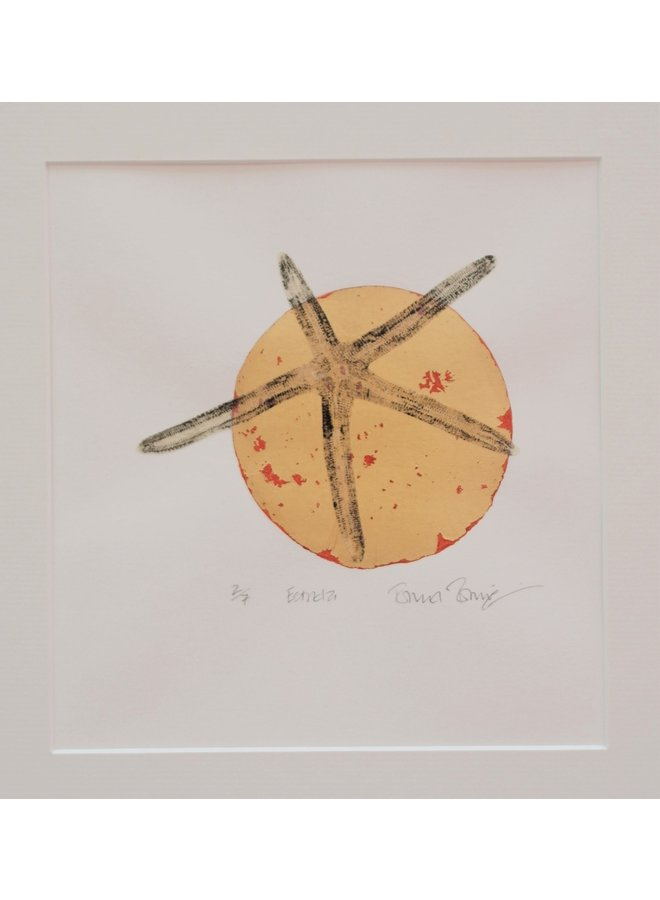 Estrela 1 Bildschirm & Gyotaku Druck-02
