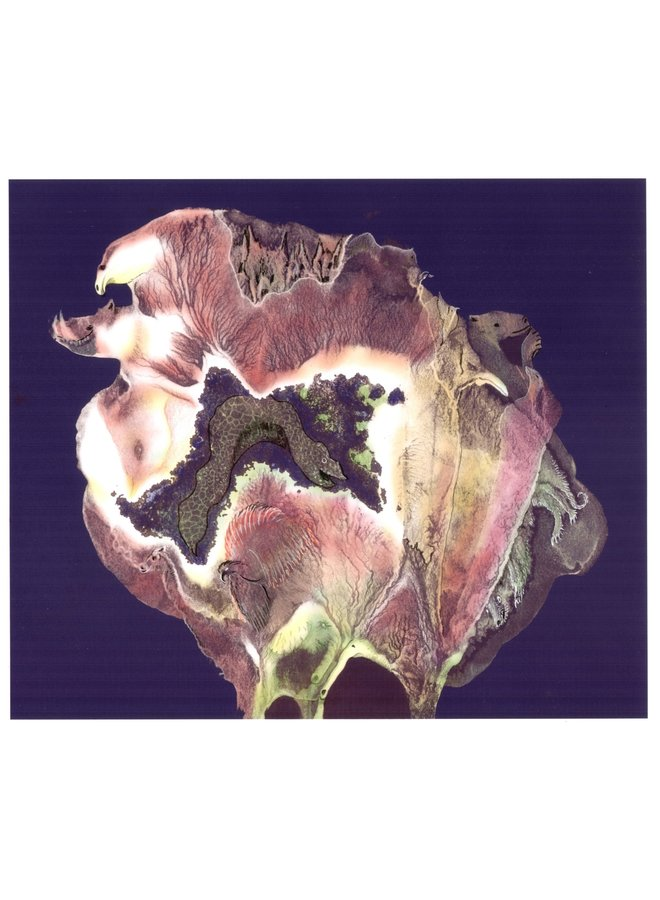 Flora Zoology unframed