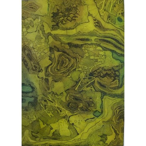 Susan Wright Definición del paisaje 1 15