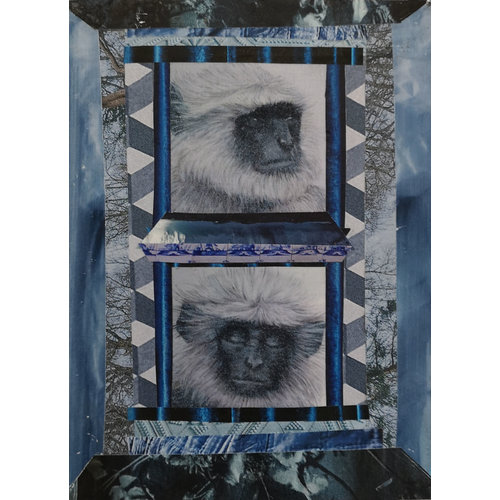 Alyson Barnard Zwei Affen - 11