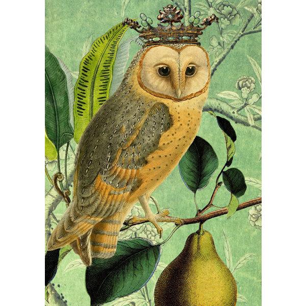 The Owl & the Pear card