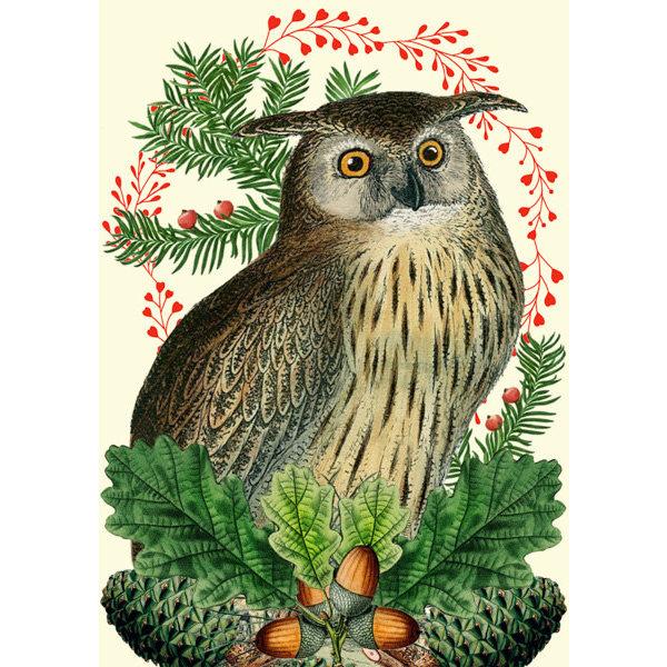Christmas Festive Owl  card