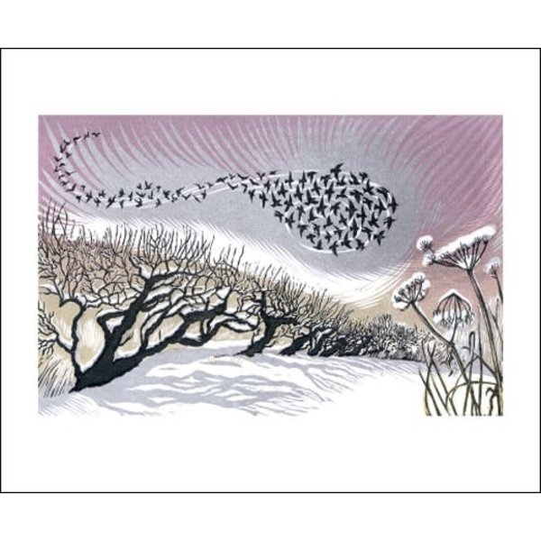 Mid-Winter Starlings by Niki Bowers