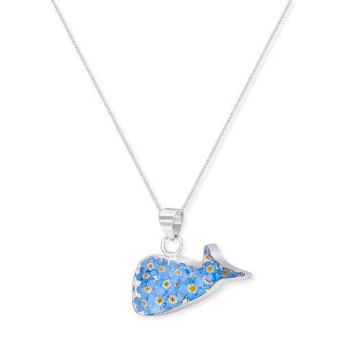 Shrieking Violet Whale Forget me not pendant real flowers and silver 124