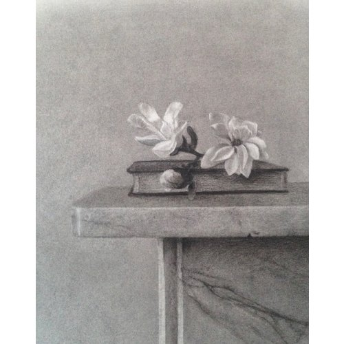 Linda Brill Magnolia Stellata Giclee Print 026