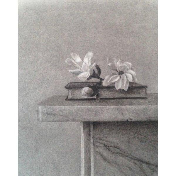 Magnolia Stellata Giclée-Druck 026