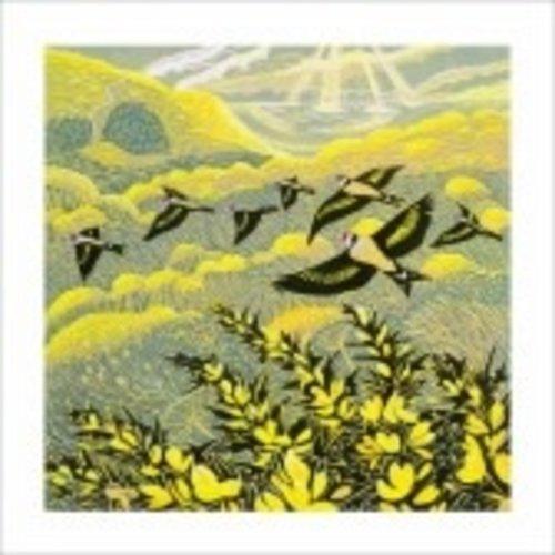 Artists Cards Warren Glen door Annie Sudan 140x140mm kaart