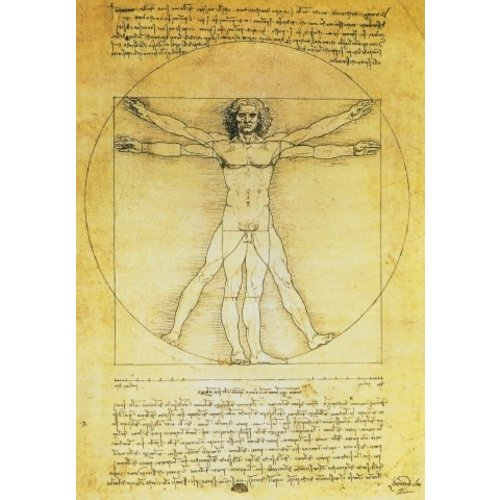 Artists Cards Vitruvian Man by Leonardo Postcard