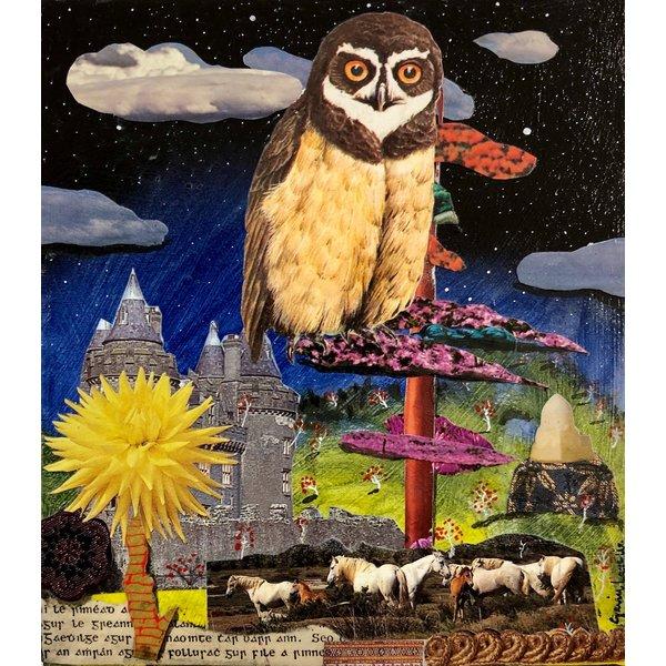 Night Owl 16